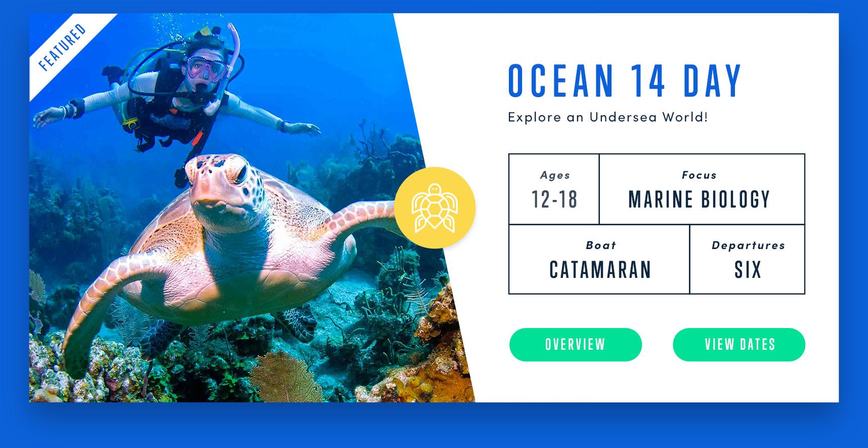 sail-caribbean-adventure-card