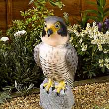 Peregrine Falcon with Moving Head by Smart Solar