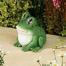 Bright Eye Frog, 16.5cm by Smart Solar