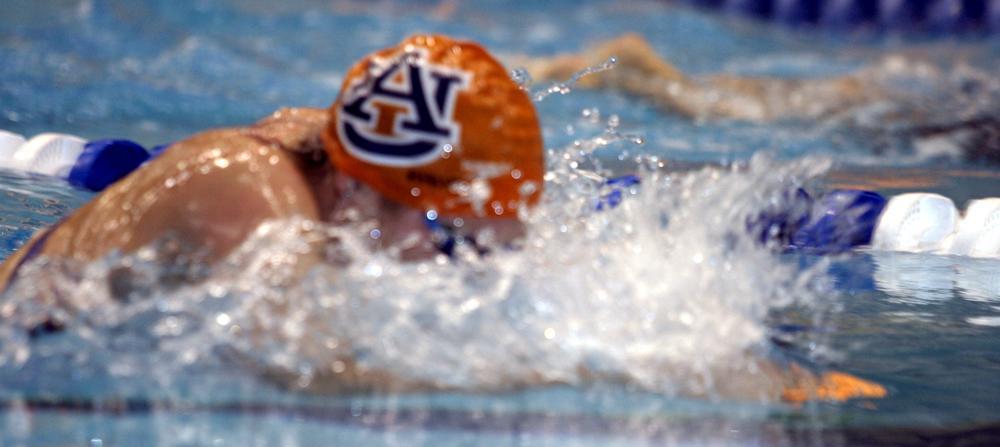 Auburn Swimming