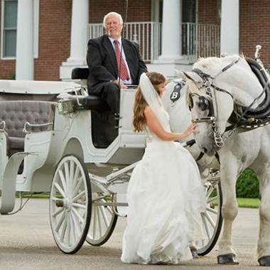 Horse & Carriage Service of Dothan