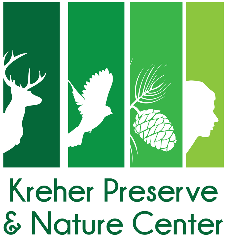 Summer Ecology Camp, Camp Discovery