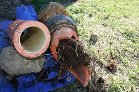 Main Sewer Line Cleanout Cost