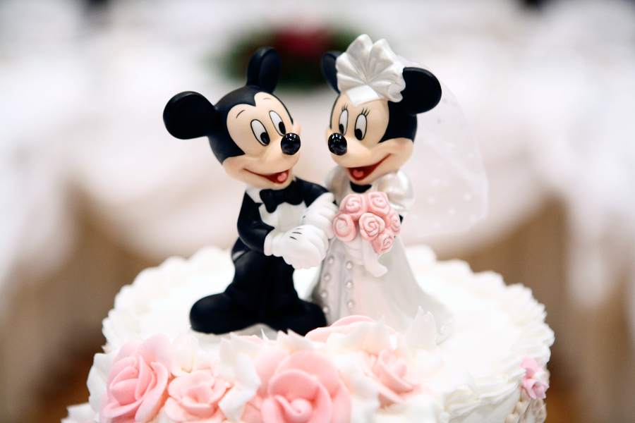 Cake Topper wedding photography 06
