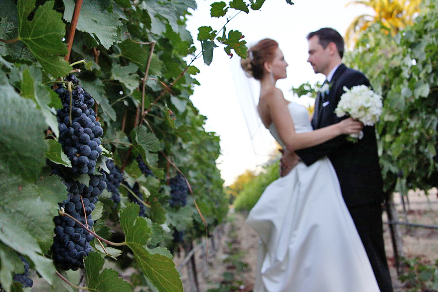 Winery Wedding Photography 06