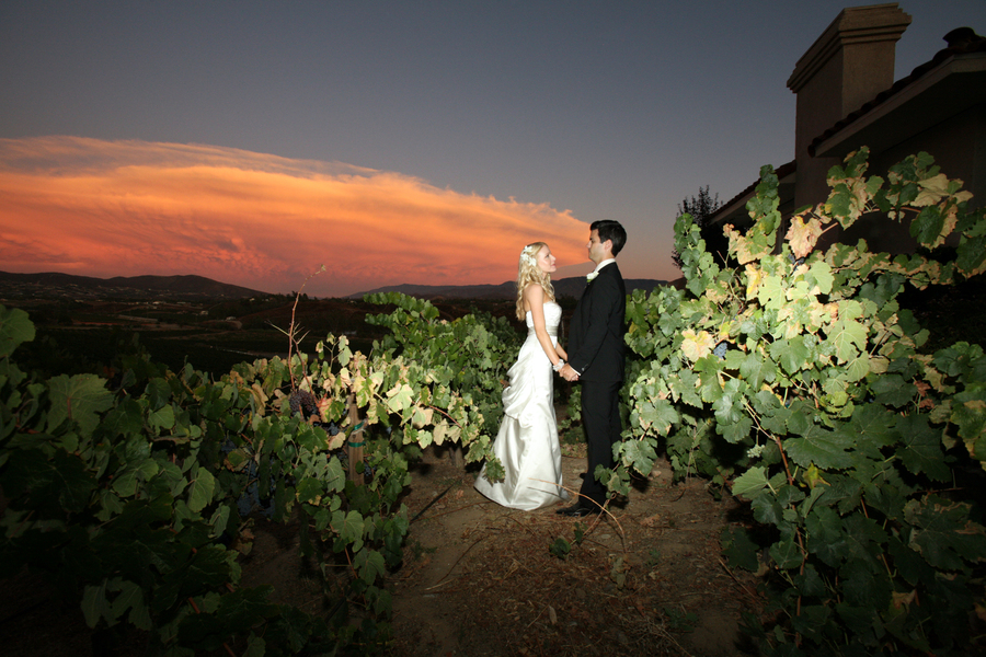 Winery Wedding Photography 13