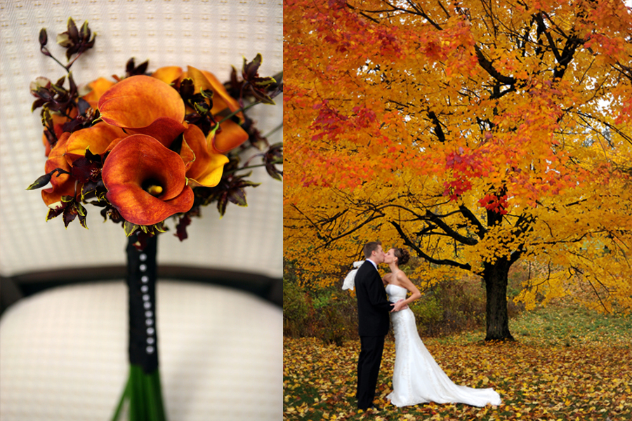 Fall weddings wedding photography wedding photographers fall wedding photography 02 junglespirit Choice Image