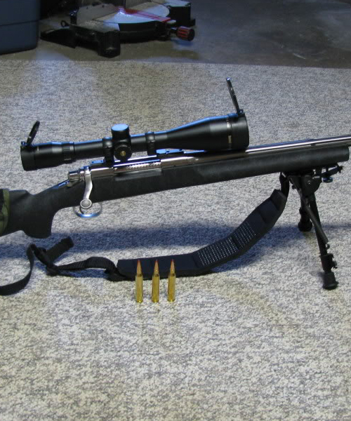 Remington Sniper