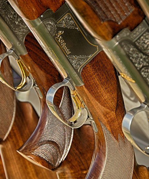 Deer Hunting AR Rifle: S&W M&P10