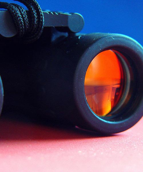 Top 5 Deer Hunting Binoculars That Give Good Value For Money