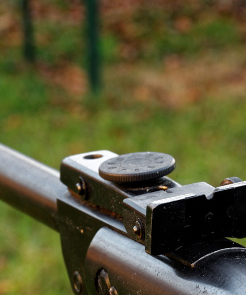 Air Rifle 4: The Ruger M77 All-Weather