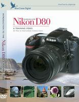 Introduction to the Nikon D80