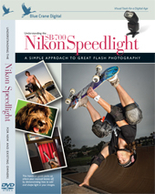Understanding the Nikon Speedlight SB-700