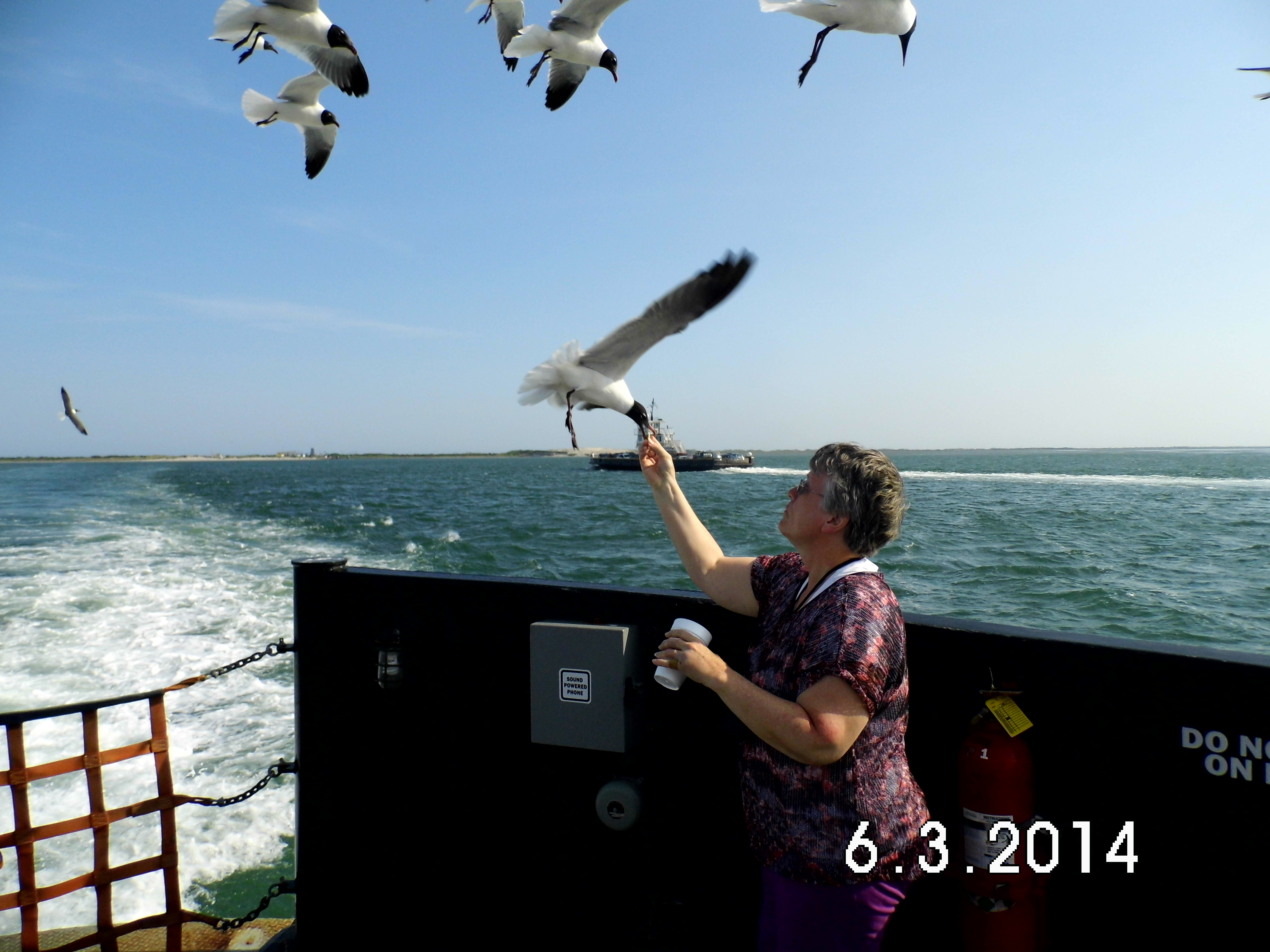 Outer Banks, NC (ferry)