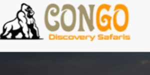 Connect with the Congo Discovery Safaris  group