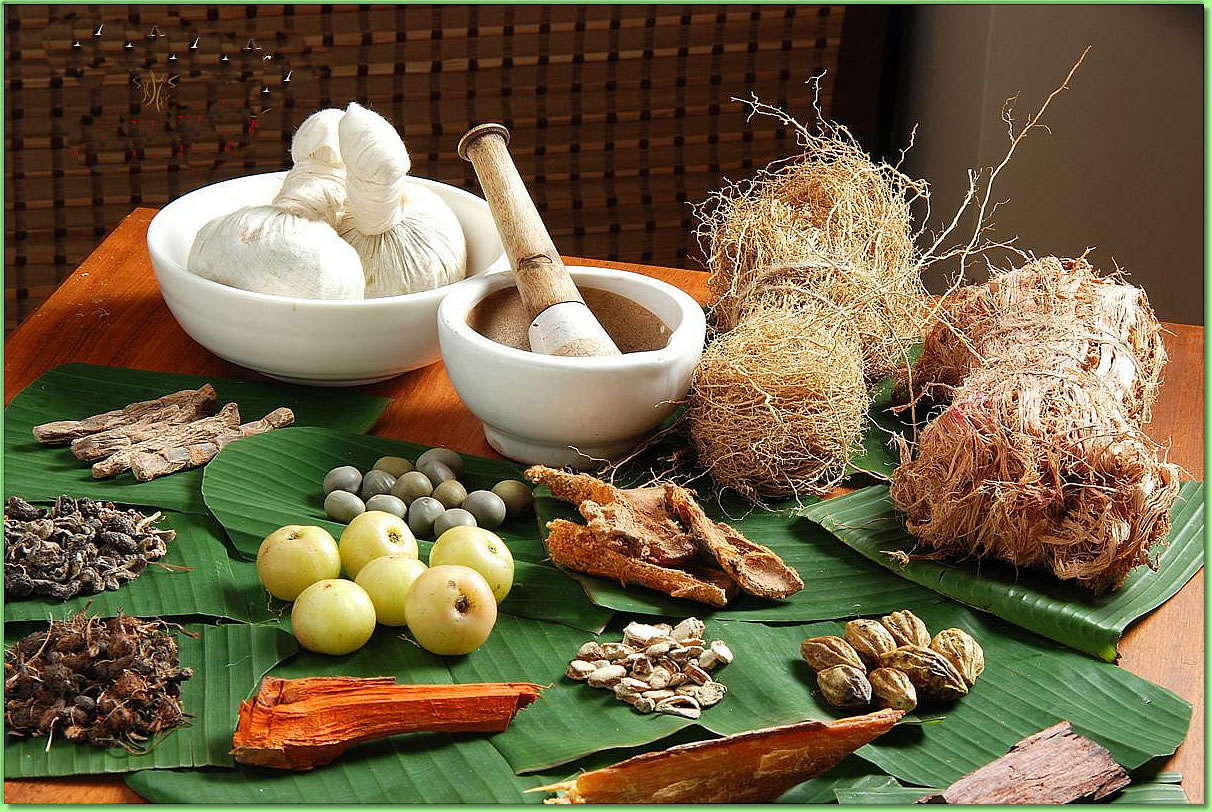 Ayurvedic_companies_for_franchise_