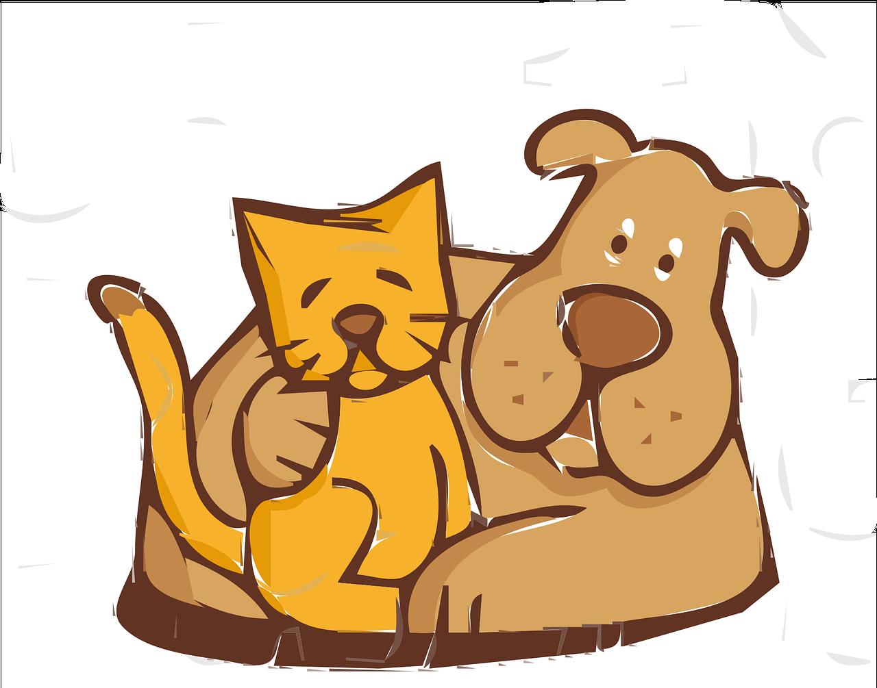 Pets_care