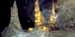 read about Destination Carlsbad Caverns, New Mexico
