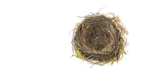 read about From Empty Nest to Full House