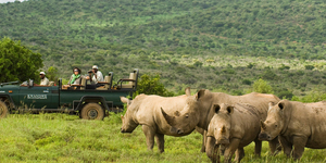 read about Welcome to an African Vacation