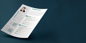 read about Effective Tips of Writing a Professional CV