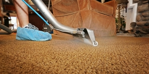 read about Laundering Carpets and Rugs AT HOME