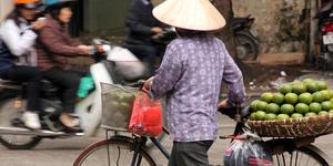 read about تجربه سفر به سرزمین اژدهای آبی با تورهای هیجان انگیز ویتنام