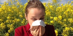 read about Tips for Allergy-proofing your Home