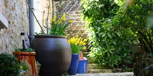 read about Courtyard Gardens - A Buffer Between Your Home And The World