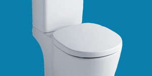 read about Know Your Toilet Seat Options And Invest On The Best One