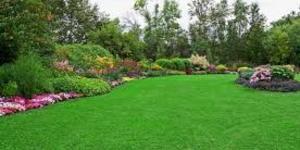 read about   Landscape mainternance servies