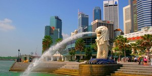 read about Top Bus operators in Singapore