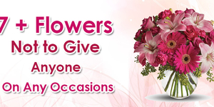 read about 7+ Flowers Not to Give Anyone On Any Occasions