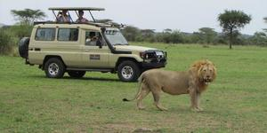 read about Top Reasons to Opt for an Exciting Tanzania Adventure Tour