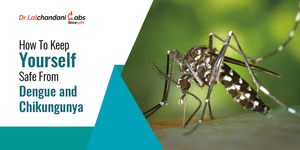 read about Keep your environment safe from Dengue and Chikungunya