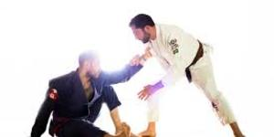 read about Martial Arts Schools in Montclair: Benefits of Martial Arts Training