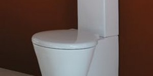 read about Top Three Parts Of Your Toilet – Leave these for Essential Plumbing