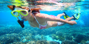 read about 5 Scuba Habits You Should Maintain To Be A Safe Diver