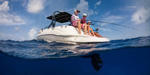 read about Enjoy a Boat Tour in Cayman to Discover Stingray City