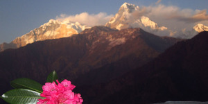 read about Poon Hill Trek- Short Trek in Annapurna