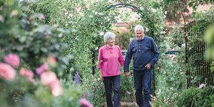 read about Modern Garden Ideas