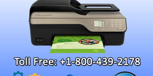 read about How to Fix Canon Printer Error 042?