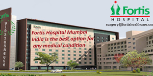 read about Go to India for Affordable Cardiac Surgery by Fortis Hospital India