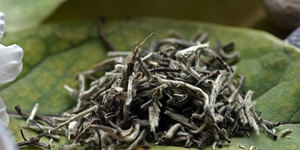 read about Most Popular White Tea around the World