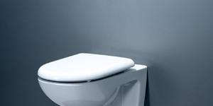 read about Revive your old Toilet with Ideal Standard Armitage Shanks Toilet Seat