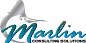 read about Jason Johnson CEO of Marlin Consulting Solutions won the Small Busines