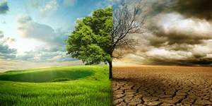 read about Top 9 Ways You Can Prevent Climate Change