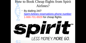 read about Spirit Airlines Manage Booking Phone Number