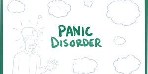 read about What Causes a Panic Disorder and How to Deal with it?