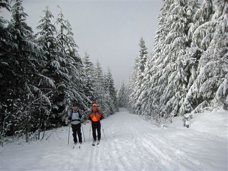 This was a four and a half mile ski into a very nice cabin in the Mount Tahoma Trails Association system.